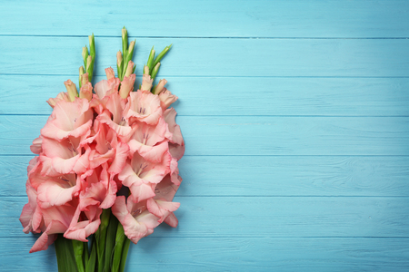 Beautiful gladiolus flowers on color wooden background