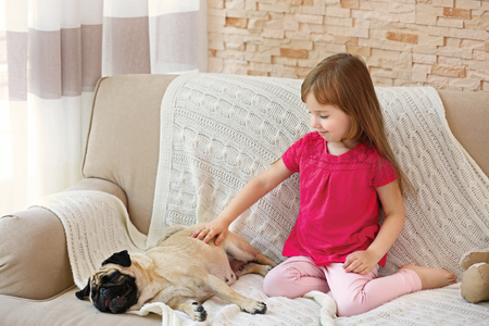 Adorable little girl and cute pug on couch