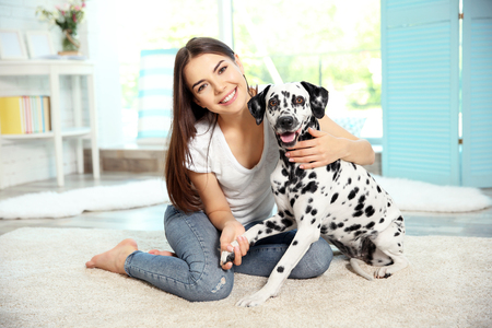 Owner with her dalmatian dog  on a carpet Stockfoto