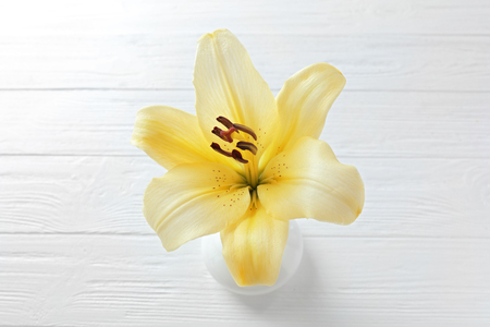 Beautiful lily on light wooden background
