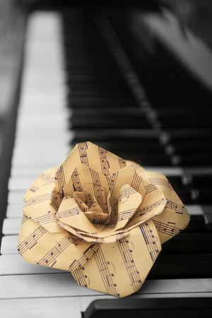 Rose made of music notes on piano keys Stockfoto