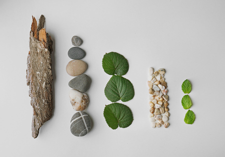 Composition of pebbles, green leaves and bark isolated on white