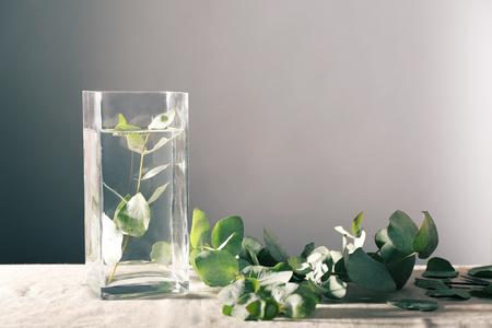 Green eucalyptus branch in vase on table Stock Photo