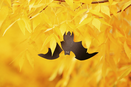 Paper bat hanging on  a tree. Halloween concept Stock Photo