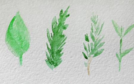 Watercolor painting of leaves on album sheet Stok Fotoğraf