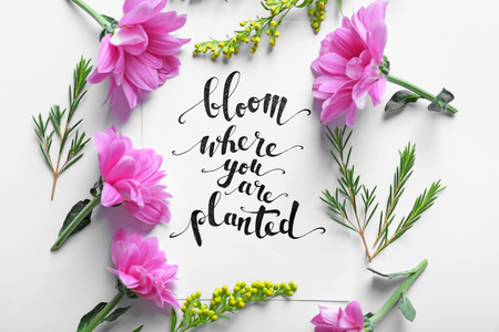 """Inscription """"BLOOM WHERE YOU ARE PLANTED"""" written on paper with flowers on white background"""