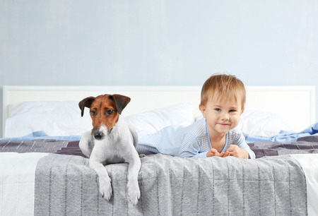 Cute little boy with funny dog on bed at home