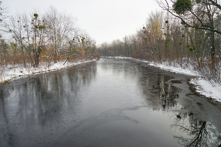 Beautiful view of river in winter forest