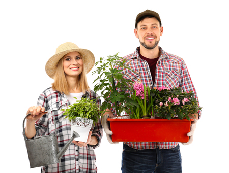 Two florists holding house plants isolated on white background 免版税图像