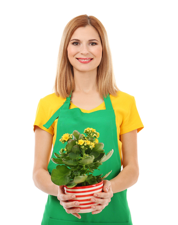 Beautiful woman florist holding house plant isolated on white background