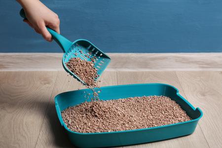 Mujer limpieza caja de arena con pala en el piso