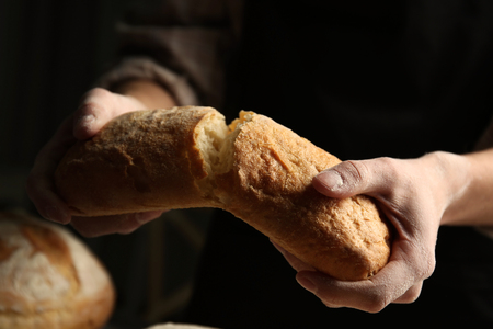 Male hands breaking freshly baked bread, closeup
