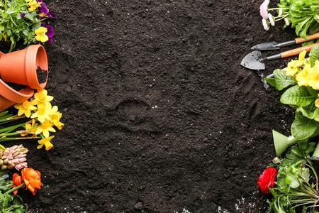 Komposition mit Blumen und Gartengeräten auf Bodenhintergrund