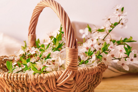 Wicker basket with blossoming spring branches on table