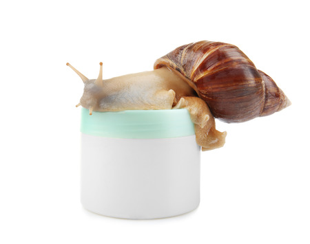 Giant Achatina snail and cosmetic product on white background 免版税图像