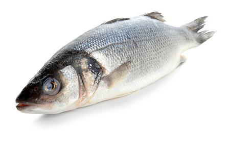Fresh raw fish on white background, closeup