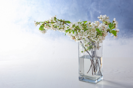 Glass vase with beautiful blossoming tree branches on light background