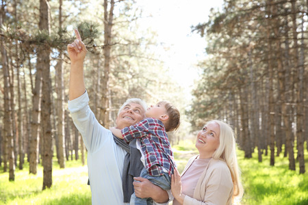 Happy grandparents with little boy in forest on sunny day
