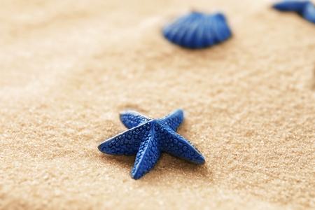 Small starfish on beach sand, closeup