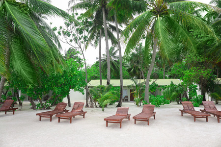 Wooden sun loungers on tropical beach in summer day 免版税图像