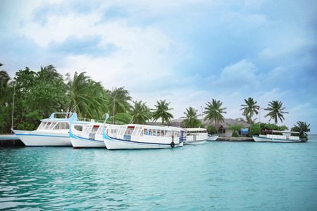 Berth with modern boats at tropical resort