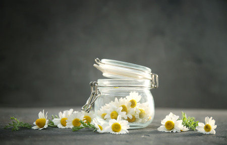 Beautiful chamomiles and glass jar on grey background