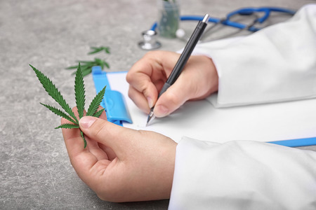 Doctor holding hemp leaf and writing something in hospital