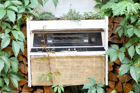 Flowerbed made of old radio in garden. Concept of recycling Banco de Imagens