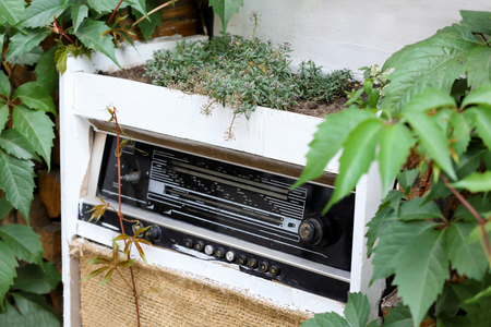 Flowerbed made of old radio in garden. Concept of recycling Stock fotó