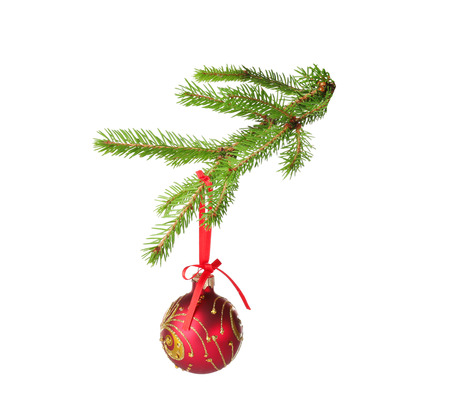 Christmas ball hanging on fir tree branch, isolated on white background Stok Fotoğraf