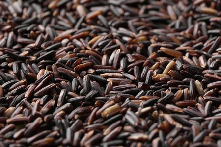 Raw black rice, closeup