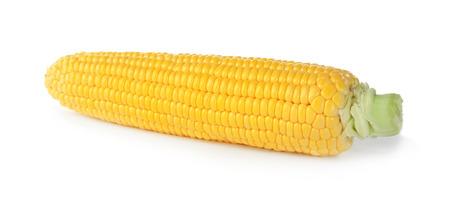 Fresh corn cob, isolated on white