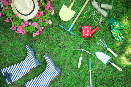Beautiful flowers and gardening tools on green lawn