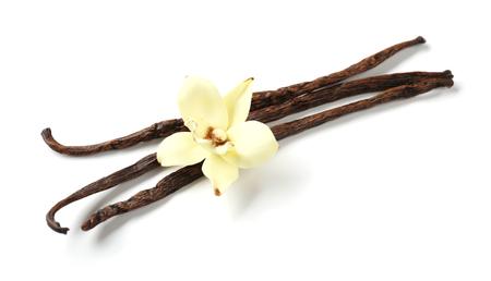 Vanille-Sticks und Blume, isoliert auf weiß