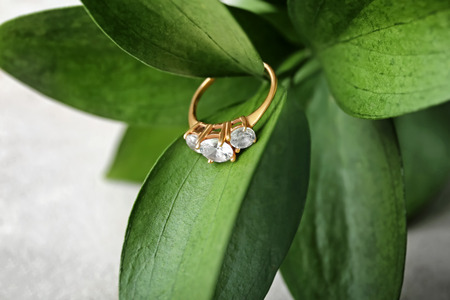 Beautiful engagement ring on leaves of plant, closeup