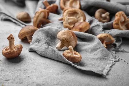 Raw shiitake mushrooms on table, closeup 写真素材