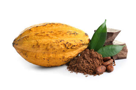 Cocoa pod and products on white background 免版税图像