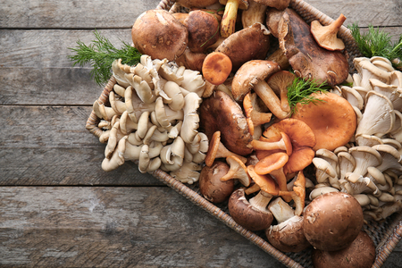 Wicker tray with variety of raw mushrooms on wooden table Zdjęcie Seryjne