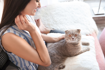 Young woman with cute pet cat on sofa at home Archivio Fotografico