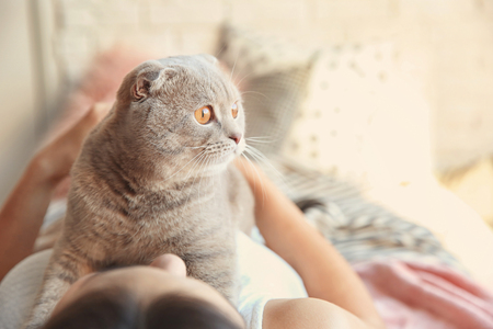Young woman with cute pet cat on bed at home Фото со стока