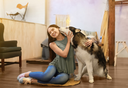 Young woman with cute Husky dog at home. Pet adoption Standard-Bild - 112683077