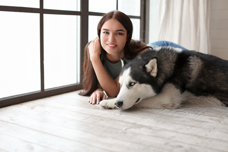 Young woman with cute Husky dog near window at home. Pet adoption Reklamní fotografie