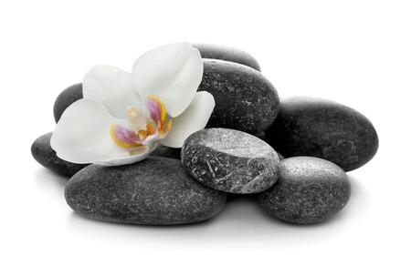 Spa stones and beautiful flower on white background