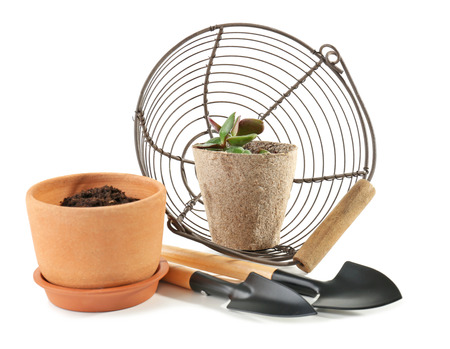 Flowerpots with gardening tools and basket on white background