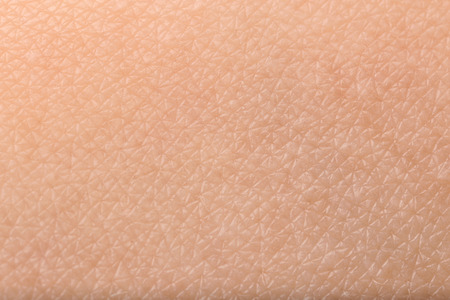 Texture of human skin, closeup