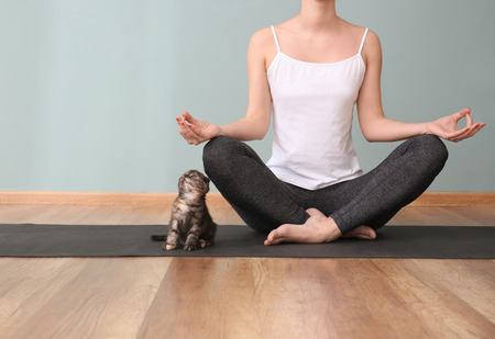 Young woman with cute kitten practicing yoga indoors Banque d'images