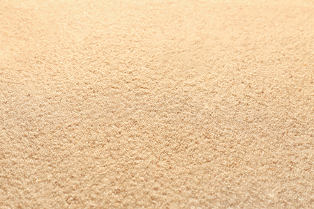 Plage de sable humide, gros plan