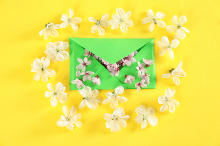 Envelop and blossoming spring flowers on color background
