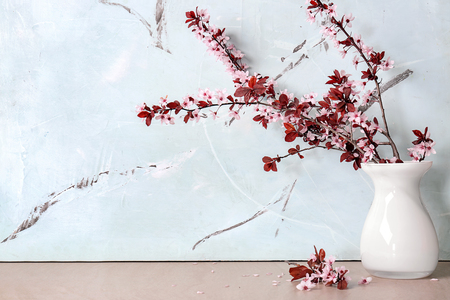 Vase with beautiful blossoming branches on table
