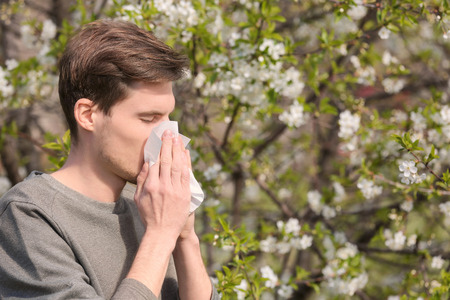 Young man with nose wiper near blooming tree. Allergy concept